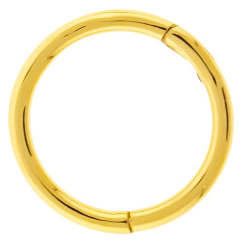 HINGED SEGMENT RING 16G 1/2 316L GOLD PVD STEEL WITH CLEAR GEM INLAY